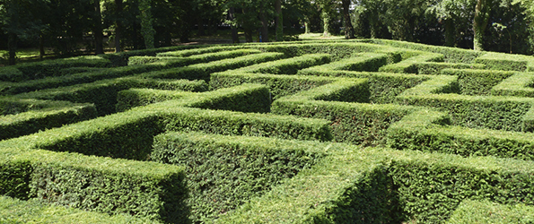 Het labyrint van Peter Edel, deel 1